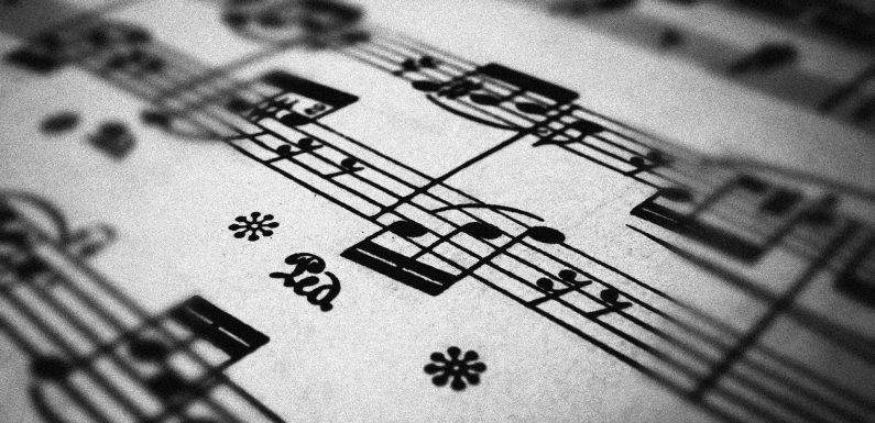 La perfezione della musica